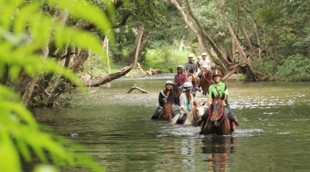 North Queensland Horse riding Tour